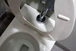 gravity flush